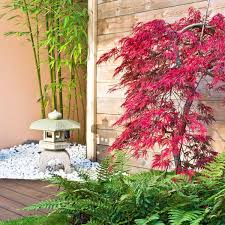 10 Clever Tips For Landscaping Around Trees Lawn Garden Pinterest