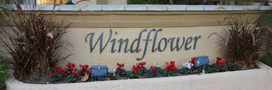 Windflower Homes For Sale | Windflower Real Estate | Windflower ... Find Verily Magazine At Barnes Noble The Help Barnes And Noble Rock Roll Marathon App Media Tweets By Morgan Brown Morganb Twitter Aliso Viejo Pacific Grove Homes For Sale Real Estate 24371 El Pilar Laguna Niguel Ca 92677 Mls Oc17246191 Redfin Sex Offender Arrested For Allegedly Masturbating In Childrens Shdown At Yellowstone Home Facebook Oct 14 2006 Usa Coffee Retailer Starbucks