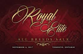 Royal Elite All Breeds Sale By Today's Publishing Inc. - Issuu Ramrod 2014 Youtube Kristin Thornton Hr Generalist Ramrod Trucking Inc Linkedin Camron Feliciano Cstruction Ltd Opening Hours 1 Tree Rd Brooks Ab The Ride Board Grateful Dead Guide To Dodge Ram Project By Truckin Magazine 112009 Boom Bust Gordon Young Medium 2017 Cates Farms Star Search Sale Catalog Ranch House Designs Issuu Pace Hshot Service Home Facebook Austin Forrest Rating Stone Company