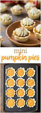 Splenda Pumpkin Pie Crustless by Top 25 Best What Pumpkin Ideas On Pinterest Thanksgivinghack