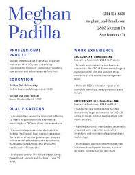 It Professional Resume Templates Canva 16