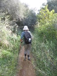 Plink Your Sink Poison Control by Walking Boots David U0026 Deirdre Go Hiking