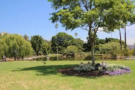 100 Flannel Flower Glass Garden Art Sydney Inspirational Art Table