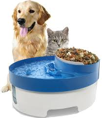 water for cats pet supplies oxgord pet water food bowl feeder for