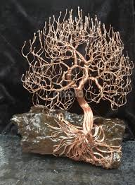Tree On A Rock With Roots Exposed By Brian Boyer