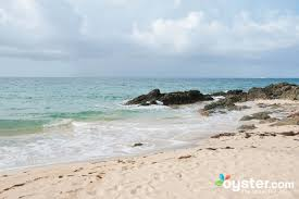 100 Away Spa Vieques See It Before Its Gone The Bioluminescent Bay Of Oystercom