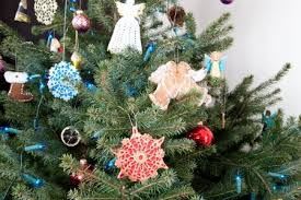 Christmas Tree Has Aphids by How To Keep Your Christmas Tree Pest Free Any Pest Inc