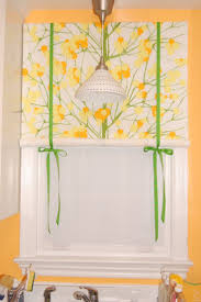 Kitchen Curtain Ideas Diy by 89 Best Shades And Blinds Images On Pinterest Window Coverings