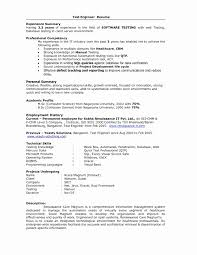 2 Year Experience Resume Format For Software Developer Best Of Samples Experienced Professionals Inspirationa