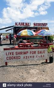 Popular Roadside Cooked Shrimp Stand Kahuku Shrimp North Shore Oahu ... Almost Kahuku Garlic Shrimp Truck Fix Feast Flair Oahu Food Trucks Youtube Romys Prawns North Shore Hawaii What Are Oahus Best Food Trucks Warning May Cause Hunger Pains No Snakes On A Plane But From Aloha To Trip Giovannis In And The Original Kahuku Everything Glitters Camaron Photos The Pickiest Eater In World Haing Loose At Johnny Kahukus For Famous Yelp Unlocking The Secrets Of Ingas Adventures