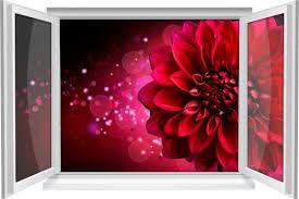 wandtattoo wandbild fenster dahlie blume rot wohnzimmer deko