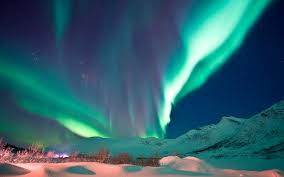 See the northern lights in Narvik Norway
