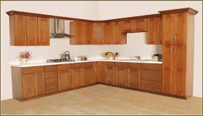 Home Depot Prefabricated Kitchen Cabinets by Home Depot Stock Kitchen Cabinets Hbe Kitchen