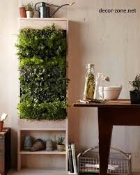 Plants In The Interior Kitchen Decorating Ideas