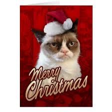 cat merchandise official merchandise grumpy cat