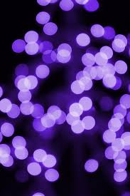 Barcana Christmas Trees Dallas Texas by Lovely Ideas Purple Christmas Lights Wide Angle 5mm Led 70 5mm 4