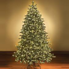 8ft Artificial White Christmas Tree by Amazing Design Ideas Pre Lit Christmas Trees Winter Park Full Tree