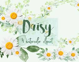 Daisy Clipart Digital Flowers DIY Invites Watercolor Scrapbooking Wedding Invitations