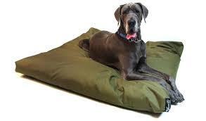 JUMBO Rectangle Memory Foam Dog Bed