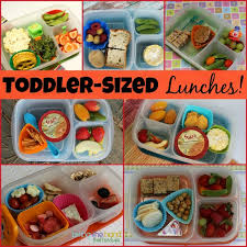 Biting The Hand That Feeds You Toddler Sized Lunches For Healthy Meal Ideas Daycare