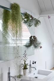mein traum vom grünen badezimmer green lifestyle