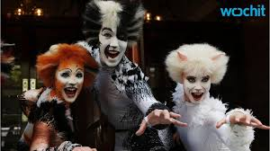 cats on broadway musical cats pounces back to broadway this summer