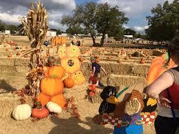 Pumpkin Patches In Bakersfield Ca by Pumpkin Festivals 2018 2019 Find Pumpkin Events Everfest