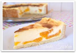 pudding schmand kuchen mit mandarinen kuchen und torten