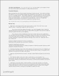 Ceo Resume Examples 2016 Lovely Senior Financial Analyst Samples