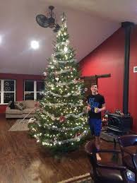Frasier Christmas Tree Cutting by Fraser Traditions Christmas Tree Farm Home Facebook
