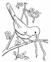 Bird Eat Little Snake Coloring Page