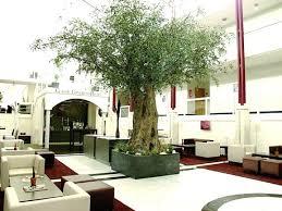 dekorationen mit kunstpflanzen kunstbäume und kunstpalmen