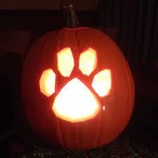 Pumpkin Patch Auburn Al by 28 Best Auburn Tigers Halloween Images On Pinterest Auburn