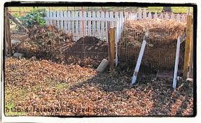 Facts About Composting - Farm Homestead How To Build The Ultimate Compost Bin Backyard Feast Top Tips For Composting Western Disposal Services Dog Waste Composter Composters And Best 25 To Make Compost Ideas On Pinterest Start 10 Things You Should Not Put In Your Pile Sff The Different Types Of Bins Diy We Got Leaves Coffee Grounds Please Page 4 Patterns Choosing A Food First Nl Low Cost Bin Your Garden Hubpages 233 Best Images Diy Garden Metro