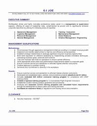 5 Page Ses Resume Sample Fancy Resumes Examples Collection Documentation Template 16