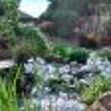Backyard Landscaping Ideas San Diego