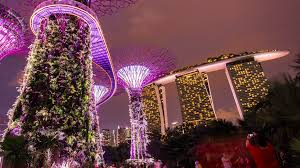 SINGAPORE NOVEMBER 18 Dusk view of The Supertree Sculpture s at