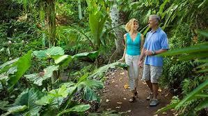 Self Guided McBryde Garden Tour Kauai
