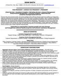 Vice President Marketing Resume Of Samples Visualcv Vp Sample