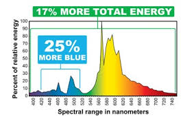 eye hortilux 600w hps enhanced spectrum bulb ballasts