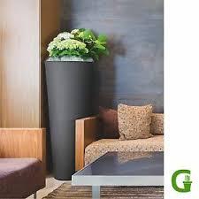 pflanzkübel 100cm hoch günstig kaufen ebay