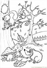9 Pics Of Woodland Forest Coloring Pages