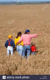 100 Stock Farm Montana Family In Wheat Field USA Photo