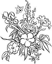 Free Printable Hibiscus Flower Coloring Pages Realistic Power