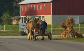 explore amish country ohio the farm at walnut creek ohio