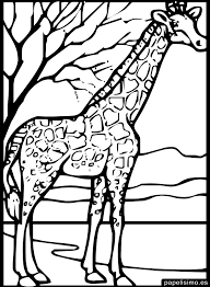 Gran Gorila Dibujalia Dibujos Para Colorear Animales