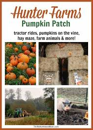 Best Pumpkin Patch Snohomish County by Pacific Northwest Fall Festivals U0026 Pumpkin Patches Western