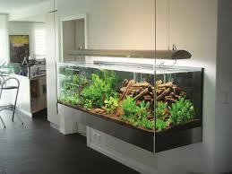 aquarium mit hängevorrichtung aquarium terrarium