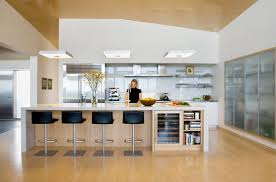 Modern Island Comfortable 8 DESIGN JUNKY Contemporary Kitchen Designs 20 Pics
