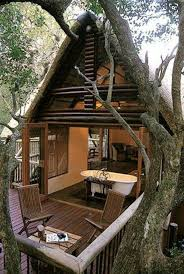 101 Best Treehouses Images On Pinterest | Treehouses, Barn Wedding ... 249 Best Backyard Diy Bbqcasual Wedding Inspiration Images On The Ultimate Guide To Registries Weddings 8425 Styles Pinterest Events Rustic Vintage Backyard Wedding 9 Photos Vintage How Plan A Things Youll Want Know In Madison Wisconsin Family Which Type Of Venue Is Best For Your 25 Cute Country Weddings Ideas Pros And Cons Having Toronto Daniel Et 125 Outdoor Patio Party Ideas Summer 10 Page 4 X2f06 Timeline Simple On Budget Sample